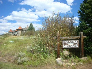 Fish Creek Meadows