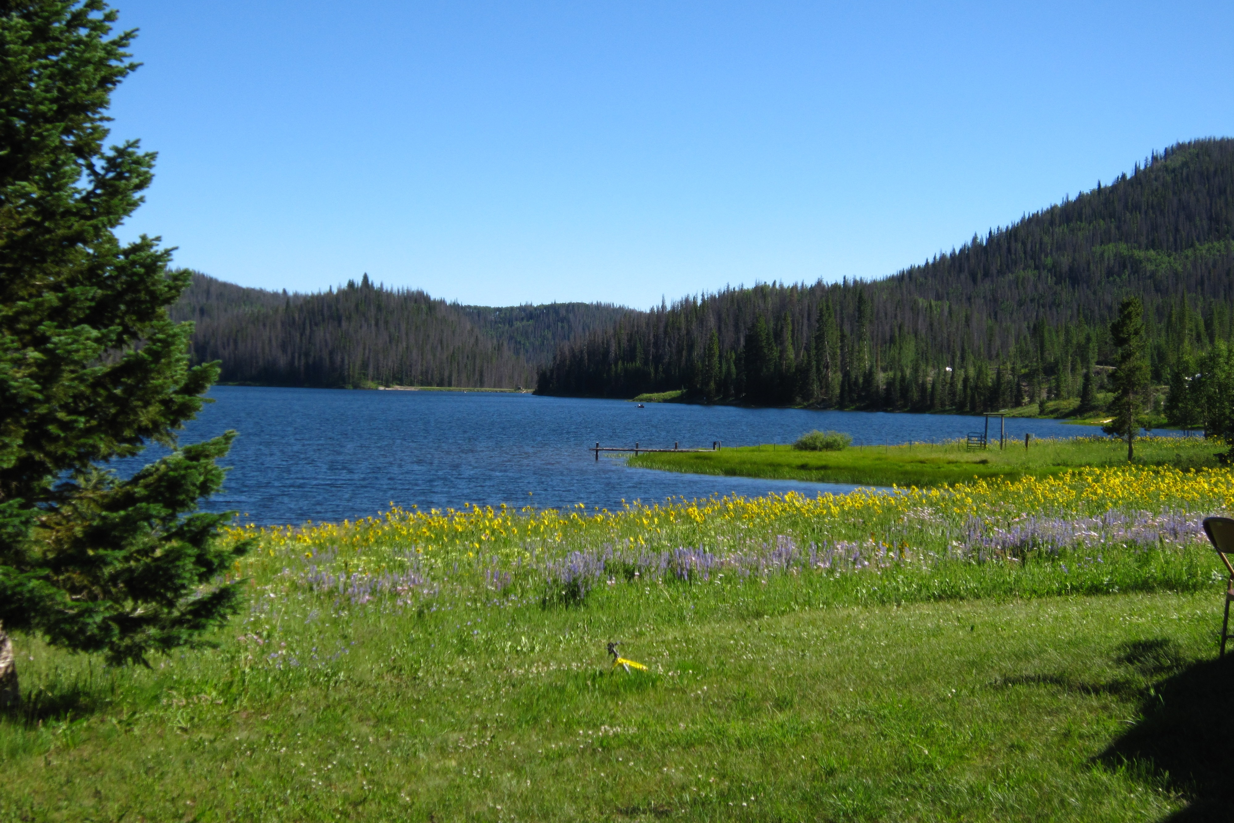 North Routt Steamboat Springs Real Estate