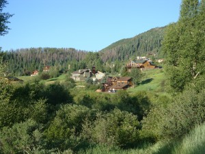 Tree Haus neighborhood in Steamboat Springs