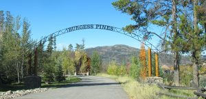Burgess Pines neighborhood in Steamboat Springs